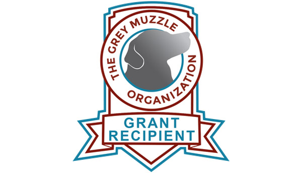 A Big Thanks to the Grey Muzzle Foundation!