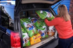 seniors pet food delivery, dog food, cat food